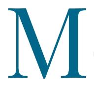 Logo Studio Legale Morizio - separazione e divorzio Torino